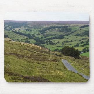 Musen vadderar - Yorkshire 2/1 Musmatta