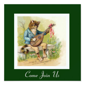 Musikalisk kattfödelsedagsfest fyrkantigt 13,3 cm inbjudningskort