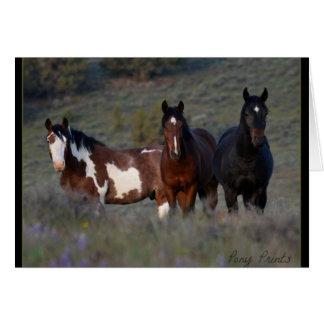 Mustangs piratkopierar det dammig och Noah kortet Hälsningskort
