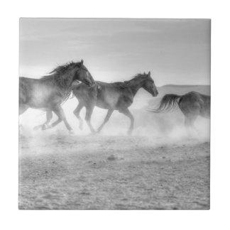 Mustangspringa Kakelplatta
