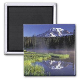 N.A. USA, Washington, Mount Rainier medborgare 5 Magnet