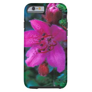NA USA, Alaska, Aleutian öar, vildblommar Tough iPhone 6 Case