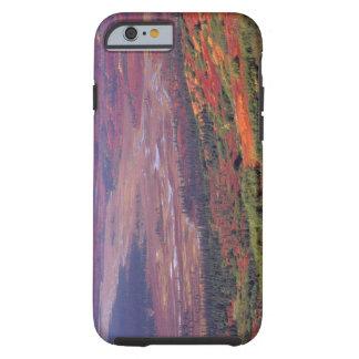 Na USA, Alaska, Denali NP, Ansicht von McKinley Tough iPhone 6 Fodral
