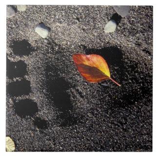 NA USA, Alaska, Katmai NP, brun björnpawprint Kakelplatta
