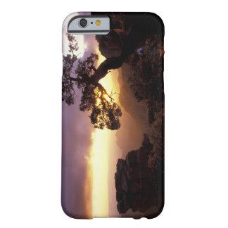 NA, USA, Arizona, Tucson, solnedgång och lone Barely There iPhone 6 Fodral