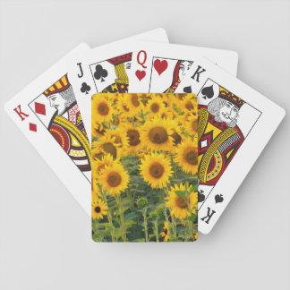 Na USA, Colorado, solrosor Spel Kort