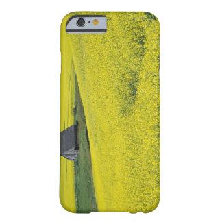 NA USA, Idaho, nära Potlatch, träladugård och Barely There iPhone 6 Skal