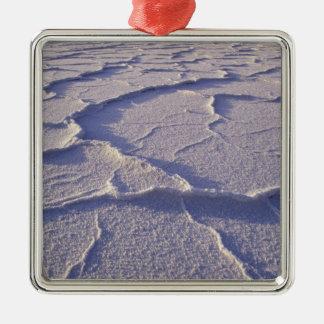 NA USA, Kalifornien. Death Valley medborgare Julgransprydnad Metall