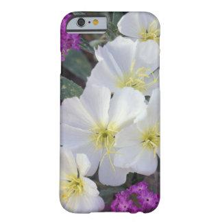 NA USA, Kalifornien, statlig Anza Borrego öken Barely There iPhone 6 Skal