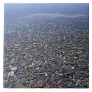 NA USA, Montana, glaciärNP-stenar i sjön Kakelplatta