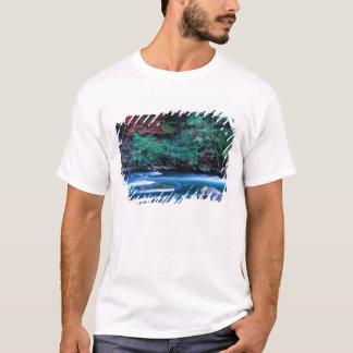 NA USA, Oregon, nedgånglövverk på norr Umpquah Tee Shirts