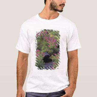 NA USA, Washington, Mount Rainier NP, rosa T-shirts