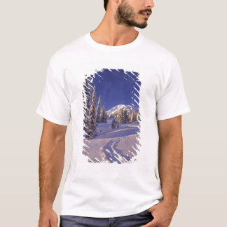 NA USA, Washington, Mount Rainier NP, Snowshoe T-shirt