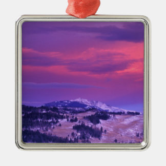 NA USA, Wyoming, Yellowstone NP, Lamar dal Julgransprydnad Metall