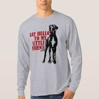 Något att sägahejer till min lite vän tröja