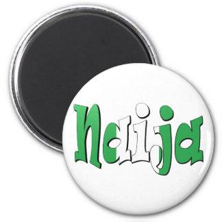 Naija (nigeriansk flagga) magnet