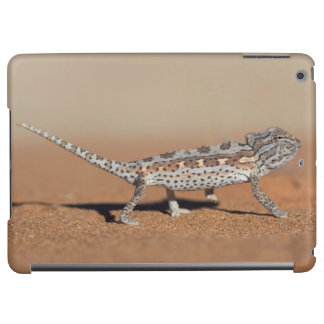 Namaqua kameleont, Namib öken, Namib-Naukluft
