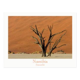 Namibia - Sossusvlei ökenvykort med text Vykort
