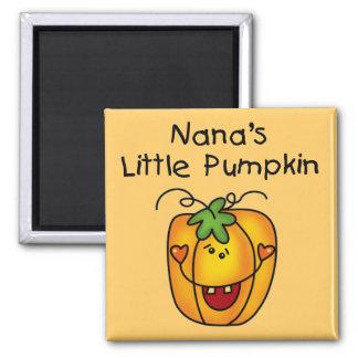 Nanas pumpaHalloween T-tröja och gåvor Magnet
