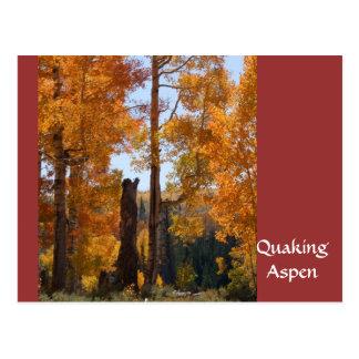 När du skälver asp- cederträ bryter Utah Vykort