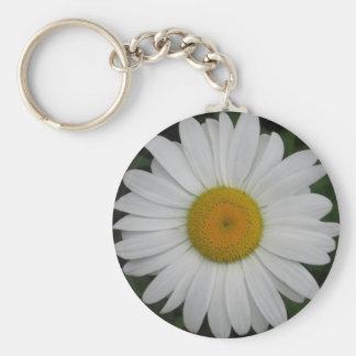 Nära daisymajdrottning rund nyckelring