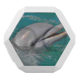 Nära övre för delfin vit bluetooth högtalare