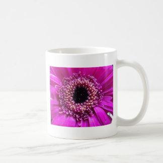 Nära övre för färgad blomma kaffemugg