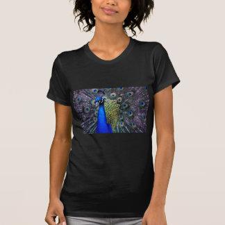 Nära övre för påfågel t-shirt