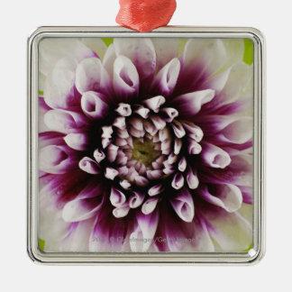 Närbild av en blomma 2 julgransprydnad metall