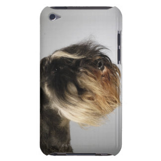 Närbild av en Schnauzer Case-Mate iPod Touch Skydd