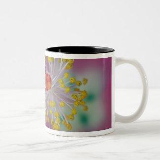 Närbild av hibiskusblommastamenen, hibiskus Två-Tonad mugg