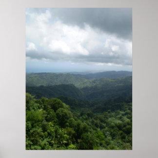 Nationalskog för El Yunque Poster