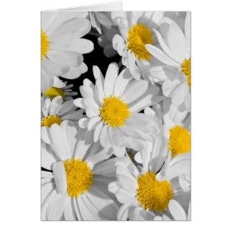 Nätt daisy hälsningskort