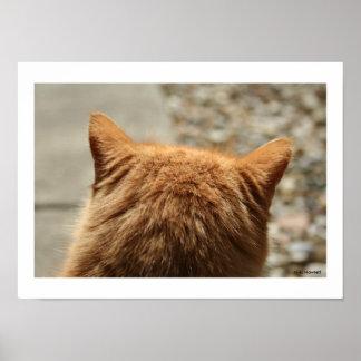 Nätt kattungeöron av Niki Poster