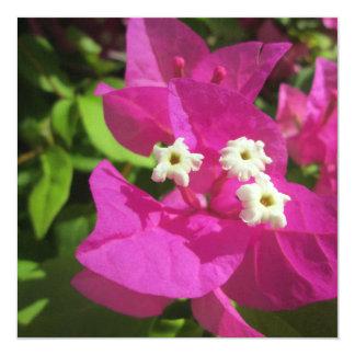 Nätt purpurfärgad Bougainvillea Fyrkantigt 13,3 Cm Inbjudningskort