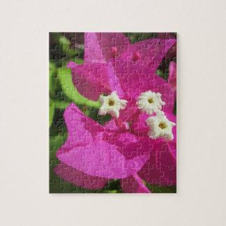 Nätt purpurfärgad Bougainvillea Foto Pussel