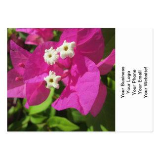 Nätt purpurfärgad Bougainvillea Set Av Breda Visitkort