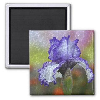 Nätt purpurfärgad Iris Magnet