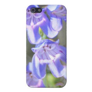 Nätt purpurfärgade vildblommar iPhone 5 fodraler