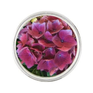 Nätt purpurfärgat vanlig hortensiaslag klämmer rockslagsnål