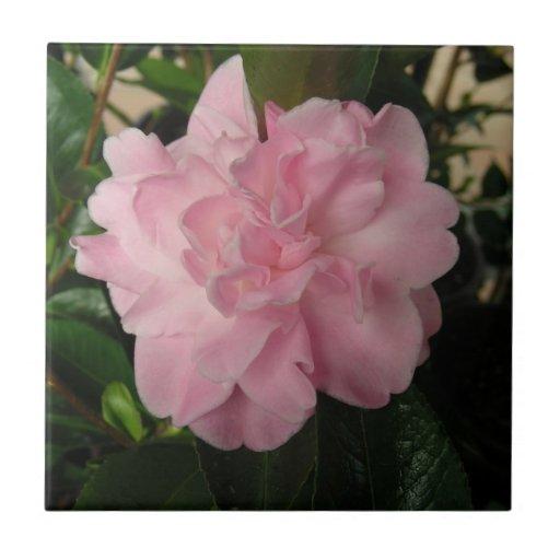 Nätt rosablomma kakelplatta av kerami