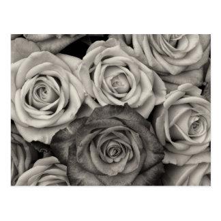 Nätt svartvit robukett av blommor vykort