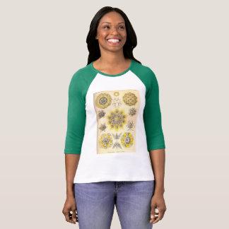 natur för kunstformen för vintageT-tröjaernst T-shirts