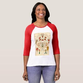 natur för kunstformen för vintageT-tröjaernst Tee Shirts