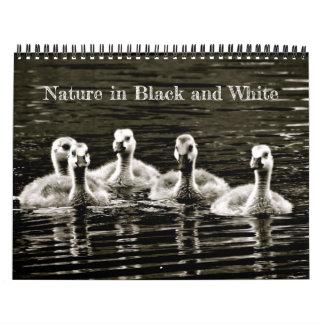 Natur i svartvitt kalender