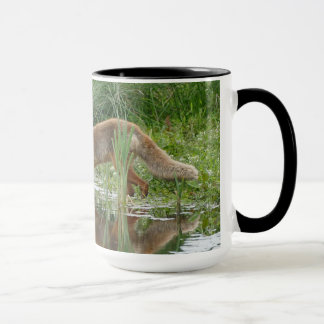 Natur: Räv som dricker från sjökaffemuggen Mugg