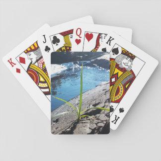 Natur som leker kort spelkort