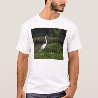 natur tröja
