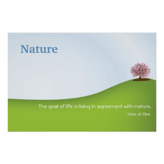 Naturcitationstecken - Zeno av Elea Poster