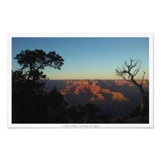 """""""Naturdekor för ett grand Canyon"""" Fototryck"""